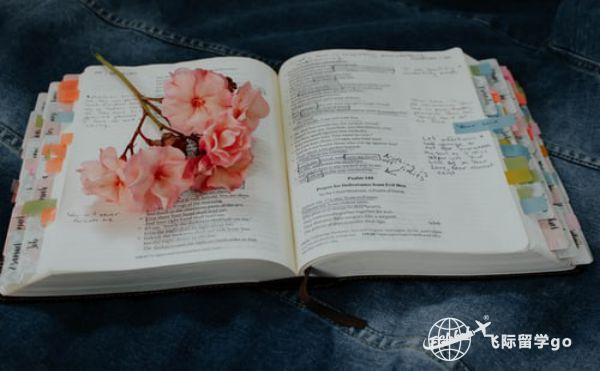 英国留学要求,各类专业申请英国留学要求详解!