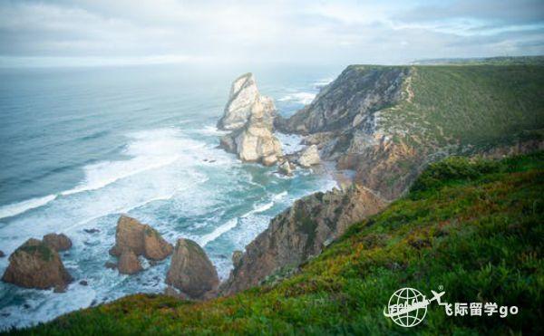 葡萄牙D7签证申请要求是什么?成功率高吗?1.jpg